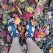 Following my feet